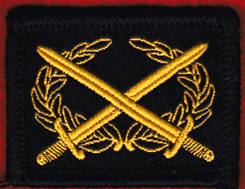 ACB - Army Combat Badge ( woven)