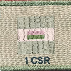 1st Combat Signal Regiment (Field)