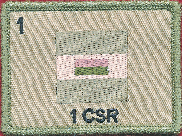 1st Combat Services Support Battalion