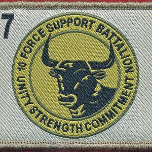 10th Force Support Battalion (Fd)