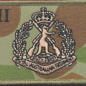 2nd Battalion, Royal Australian Regiment (Field)