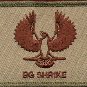 BG SHRIKE  (4th and 9th BDEs)