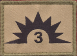 3rd Combat Services Support Battalion (Tan)