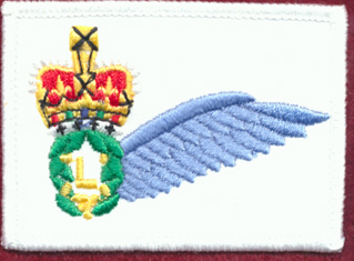 Army Loadmaster Half Wing (White)