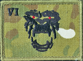 6th Aviation Regiment - Multicam (Field)
