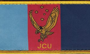 Joint Cyber Unit Patch (RAN)